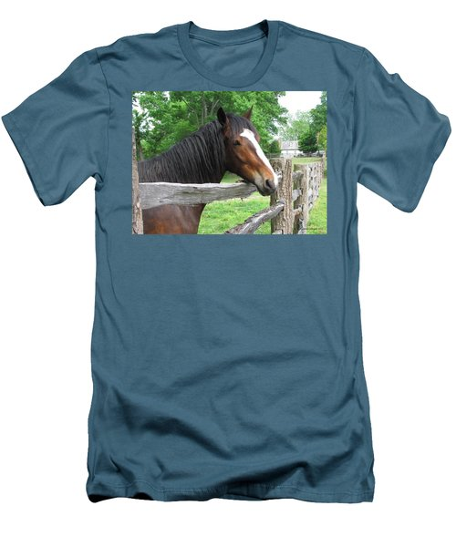 Colonial Horse Men's T-Shirt (Athletic Fit)