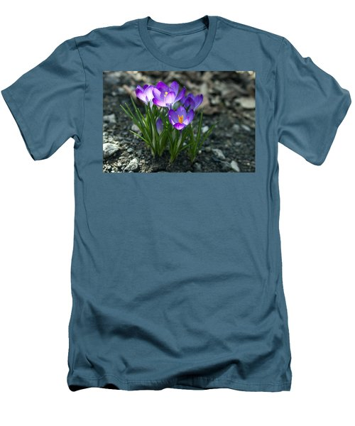 Crocus In Bloom #2 Men's T-Shirt (Slim Fit) by Jeff Severson
