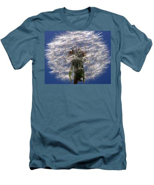 Dandelion Men's T-Shirt (Slim Fit) by Ralph A  Ledergerber-Photography