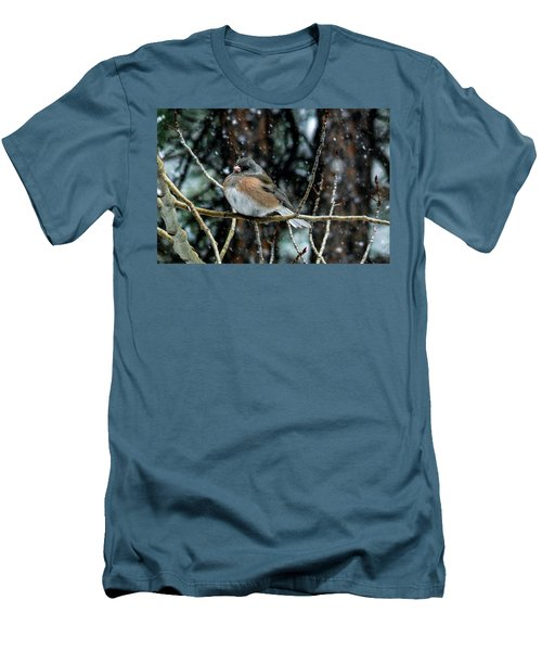 Dark-eyed Junco During A Snowfall Men's T-Shirt (Athletic Fit)