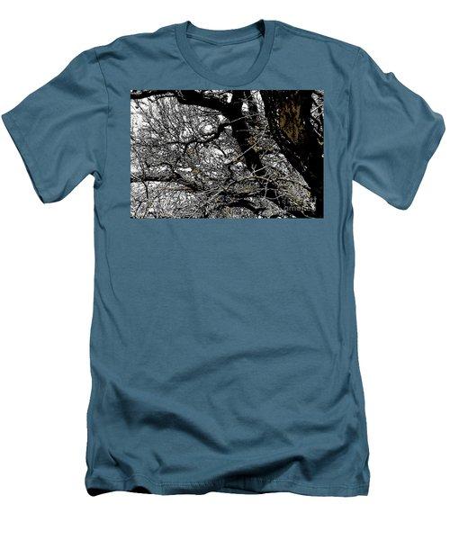 Dark Forest Men's T-Shirt (Slim Fit) by Renie Rutten