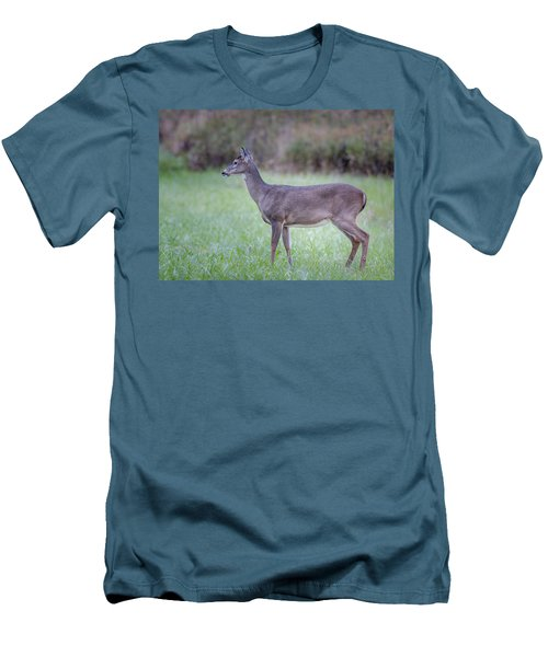 Men's T-Shirt (Slim Fit) featuring the photograph Doe In Cades Cove by Tyson Smith