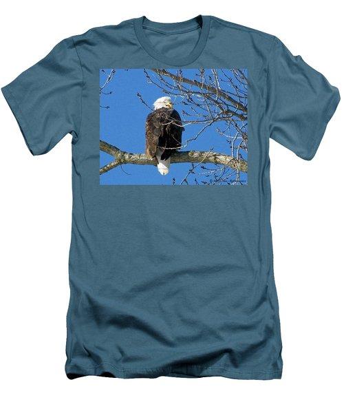 Eagle Watch Men's T-Shirt (Slim Fit) by Sue Stefanowicz