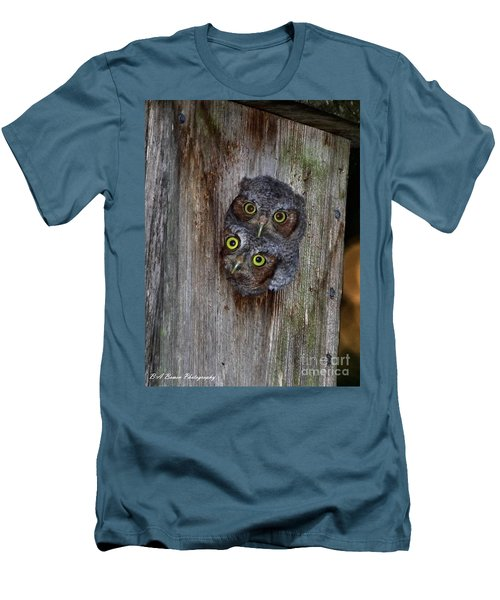 Eastern Screech Owl Chicks Men's T-Shirt (Athletic Fit)