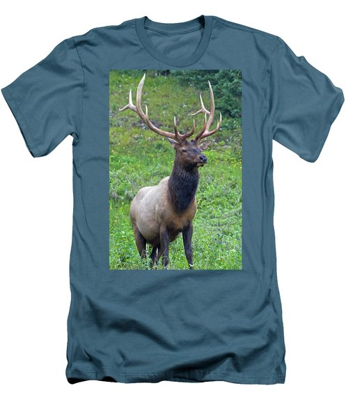 Men's T-Shirt (Athletic Fit) featuring the photograph Elk 5 by Gary Lengyel