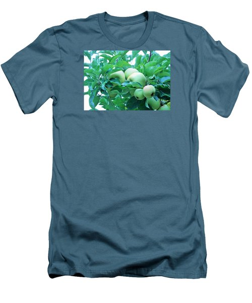 Fall's Bounty Men's T-Shirt (Athletic Fit)