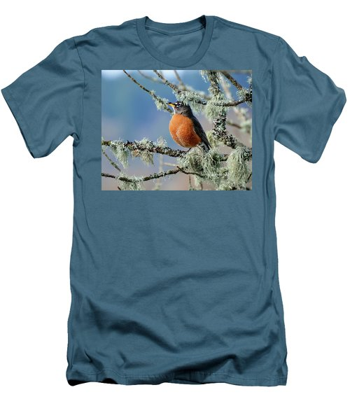 First Robin Of The Spring Men's T-Shirt (Slim Fit) by Greg Sigrist