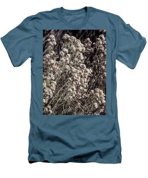 Fluff And Seeds Men's T-Shirt (Slim Fit) by John Brink