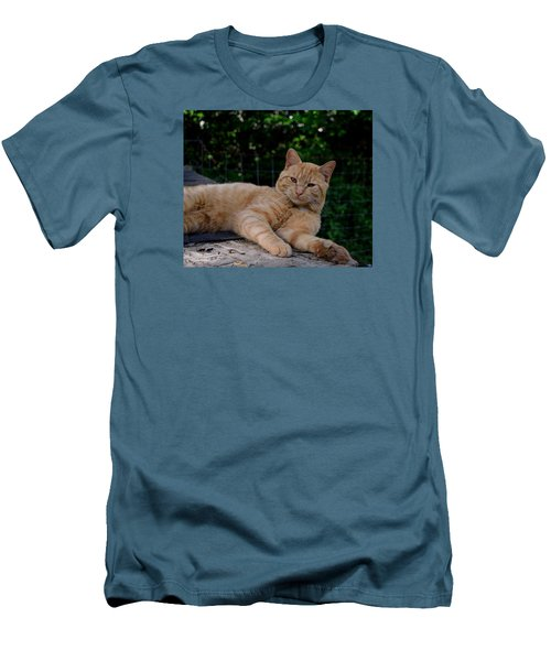 Franklin Men's T-Shirt (Slim Fit) by Karen Harrison
