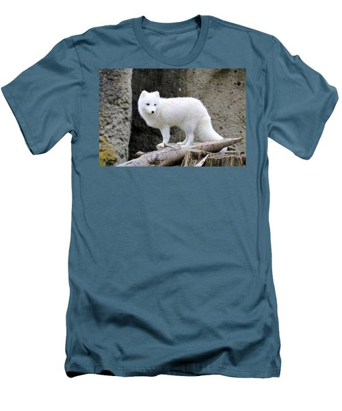 Furry Arctic Fox  Men's T-Shirt (Athletic Fit)