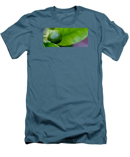 Gapefruit Men's T-Shirt (Slim Fit) by Werner Lehmann