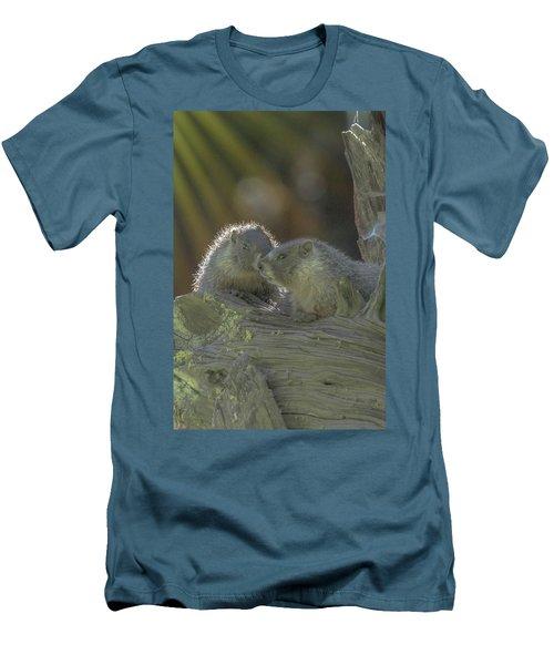 Golden Bellied Marmot Men's T-Shirt (Athletic Fit)