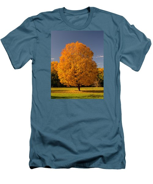 Men's T-Shirt (Slim Fit) featuring the photograph Golden Tree Of Autumn by Gary Slawsky