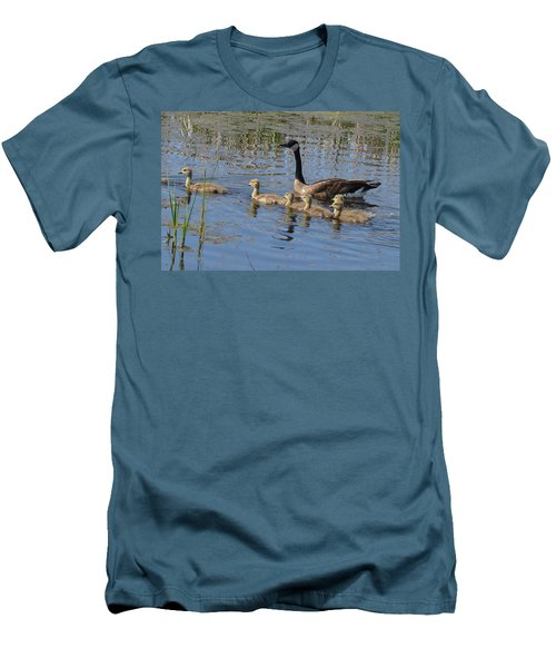 Goose And Goslings No.1867 Men's T-Shirt (Slim Fit) by Janice Adomeit