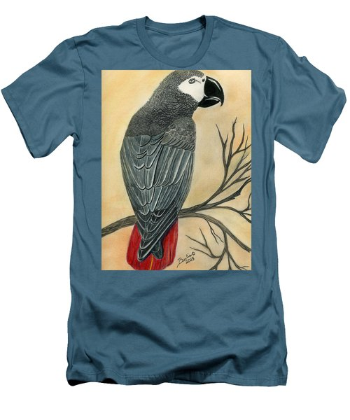 Gray Parrot Men's T-Shirt (Athletic Fit)
