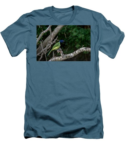 Green Jay Men's T-Shirt (Athletic Fit)