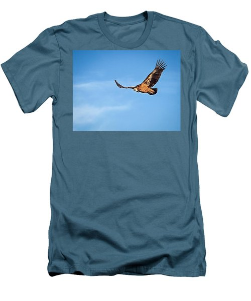 Griffon Vulture Men's T-Shirt (Slim Fit)
