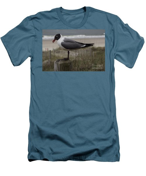 Hello Friend Seagull Men's T-Shirt (Athletic Fit)