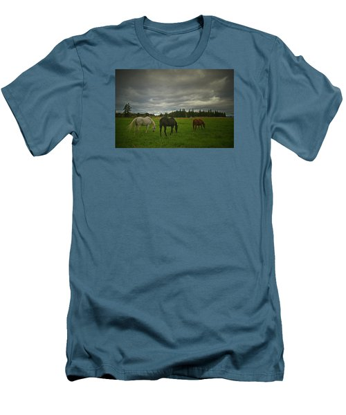 Horses Under Heavy Sky Men's T-Shirt (Athletic Fit)