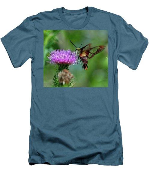 Hummingbirdbird Moth Dining Men's T-Shirt (Athletic Fit)
