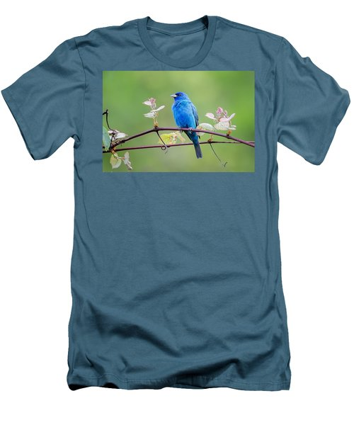 Indigo Bunting Perched Men's T-Shirt (Slim Fit) by Bill Wakeley