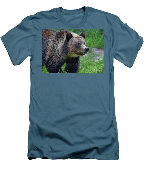 Juvie Grizzly Men's T-Shirt (Slim Fit) by Larry Nieland