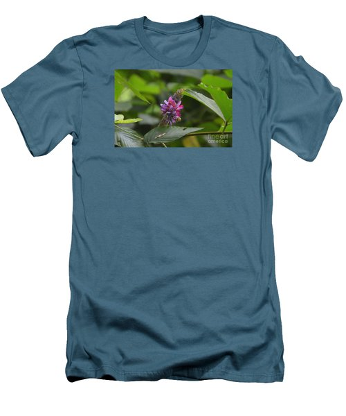Kudzu Men's T-Shirt (Athletic Fit)