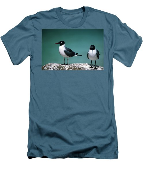 Men's T-Shirt (Slim Fit) featuring the photograph Laughing Gulls by Sally Weigand
