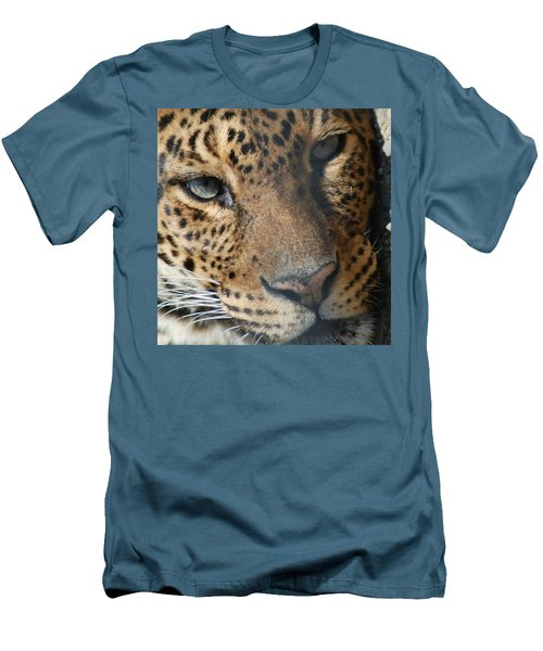 Men's T-Shirt (Slim Fit) featuring the photograph Leopard Face by Richard Bryce and Family