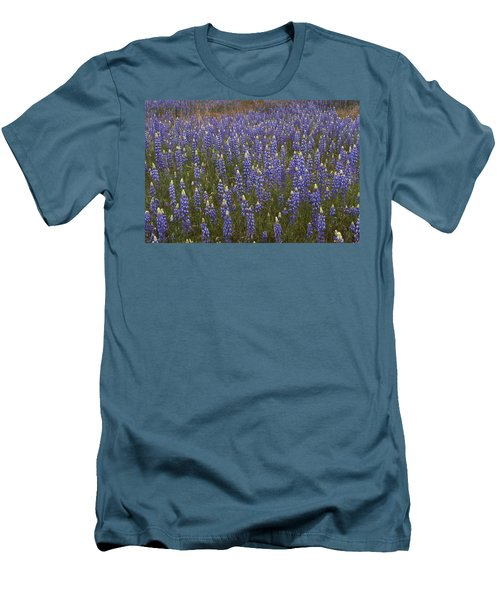 Men's T-Shirt (Slim Fit) featuring the photograph Lupines by Doug Herr