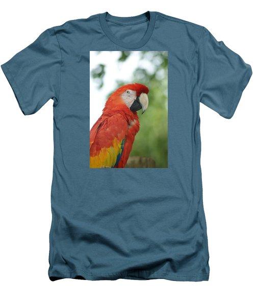 Macraw Men's T-Shirt (Athletic Fit)
