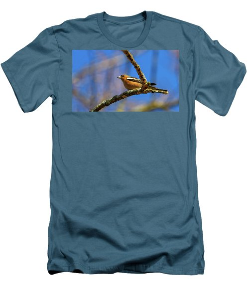 Male Common Chaffinch Bird, Fringilla Coelebs Men's T-Shirt (Athletic Fit)