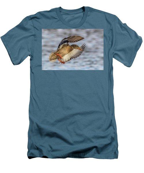 Mallard With Cupped Wings Men's T-Shirt (Slim Fit) by Paul Freidlund