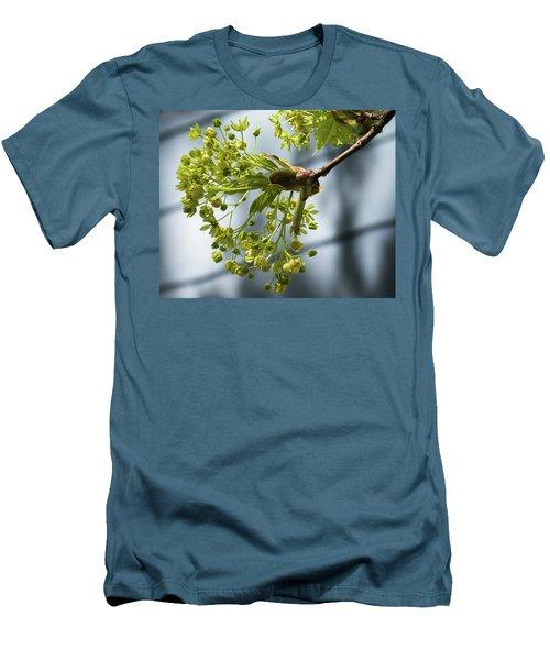 Maple Tree Flowers - Men's T-Shirt (Athletic Fit)
