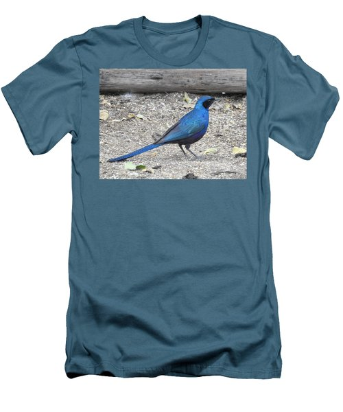 Men's T-Shirt (Slim Fit) featuring the photograph Meve's Starling by Betty-Anne McDonald