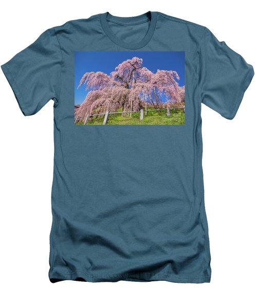 Men's T-Shirt (Athletic Fit) featuring the photograph Miharu Takizakura Weeping Cherry31 by Tatsuya Atarashi