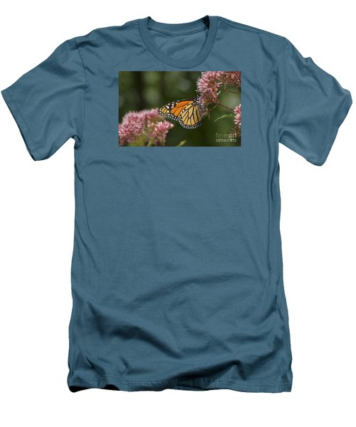 Monarch Butterfly Men's T-Shirt (Slim Fit) by Alana Ranney