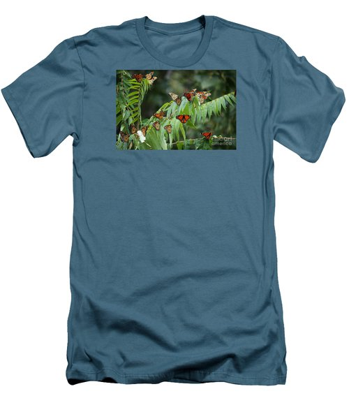 Monarch Migration Men's T-Shirt (Athletic Fit)