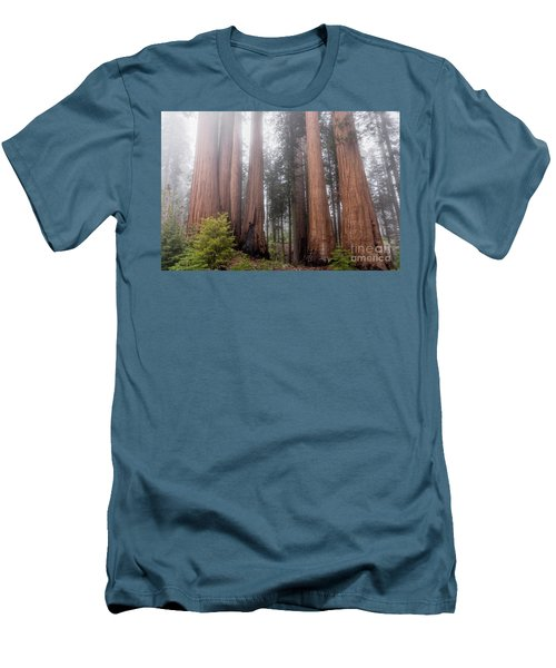 Men's T-Shirt (Athletic Fit) featuring the photograph Morning Light In The Forest by Peggy Hughes