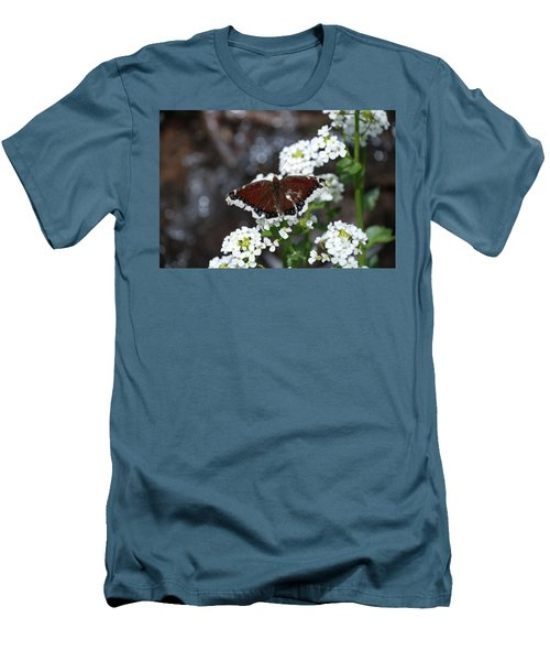 Mourning Cloak Men's T-Shirt (Athletic Fit)