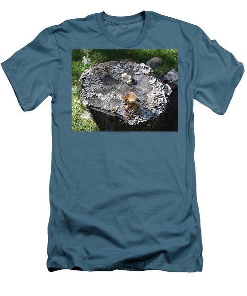 Mushroom Stump Men's T-Shirt (Athletic Fit)
