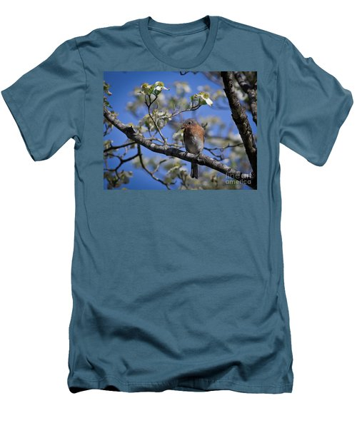 Nest Building Men's T-Shirt (Slim Fit) by Douglas Stucky