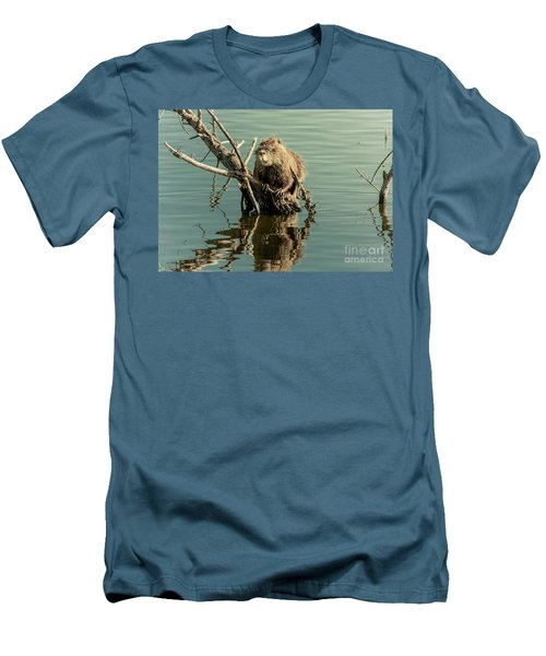 Nutria On Stick-up Men's T-Shirt (Slim Fit) by Robert Frederick