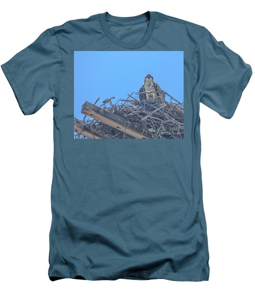 Osprey Nest Men's T-Shirt (Slim Fit) by Billie-Jo Miller