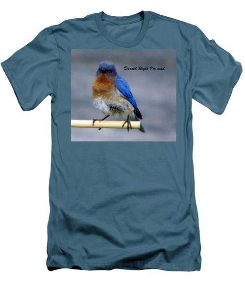 Our Own Mad Blue Bird Men's T-Shirt (Slim Fit) by Betty Pieper