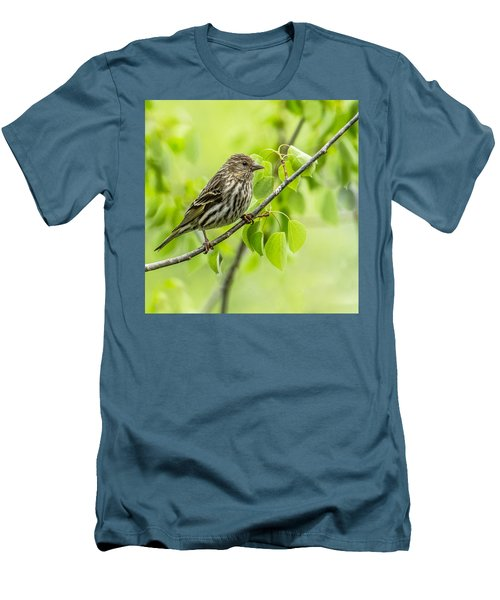 Pine Siskin On A Branch Men's T-Shirt (Slim Fit) by Yeates Photography