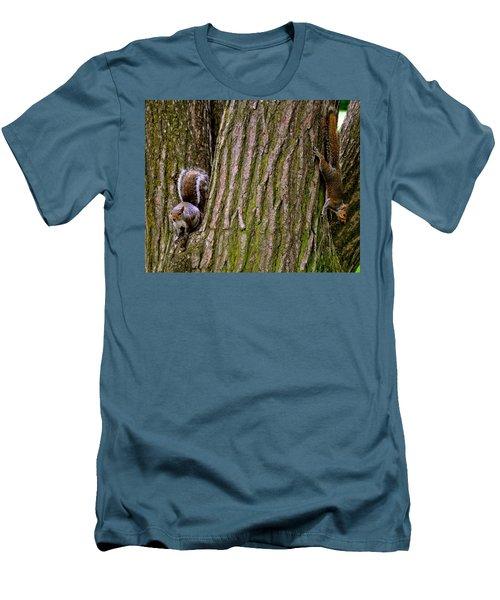 Playful Squirrels  Men's T-Shirt (Athletic Fit)