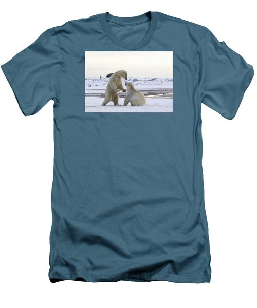 Polar Bear Play-fighting Men's T-Shirt (Athletic Fit)
