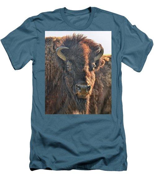 Portrait Of A Buffalo Men's T-Shirt (Slim Fit) by Nancy Landry