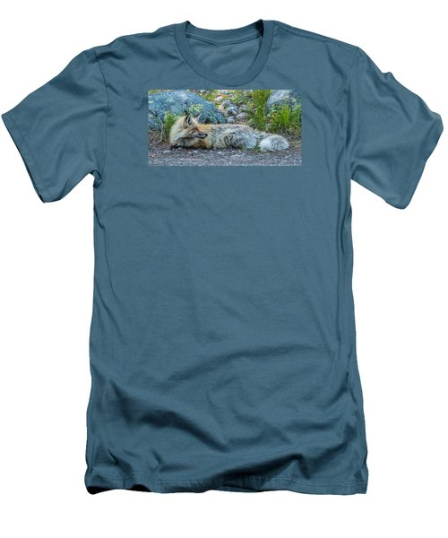 Men's T-Shirt (Slim Fit) featuring the photograph Pretty Boy Fox In Spring by Yeates Photography